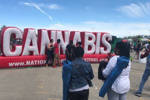 National Cannabis Festival celebrates 420, encourages small-business owners
