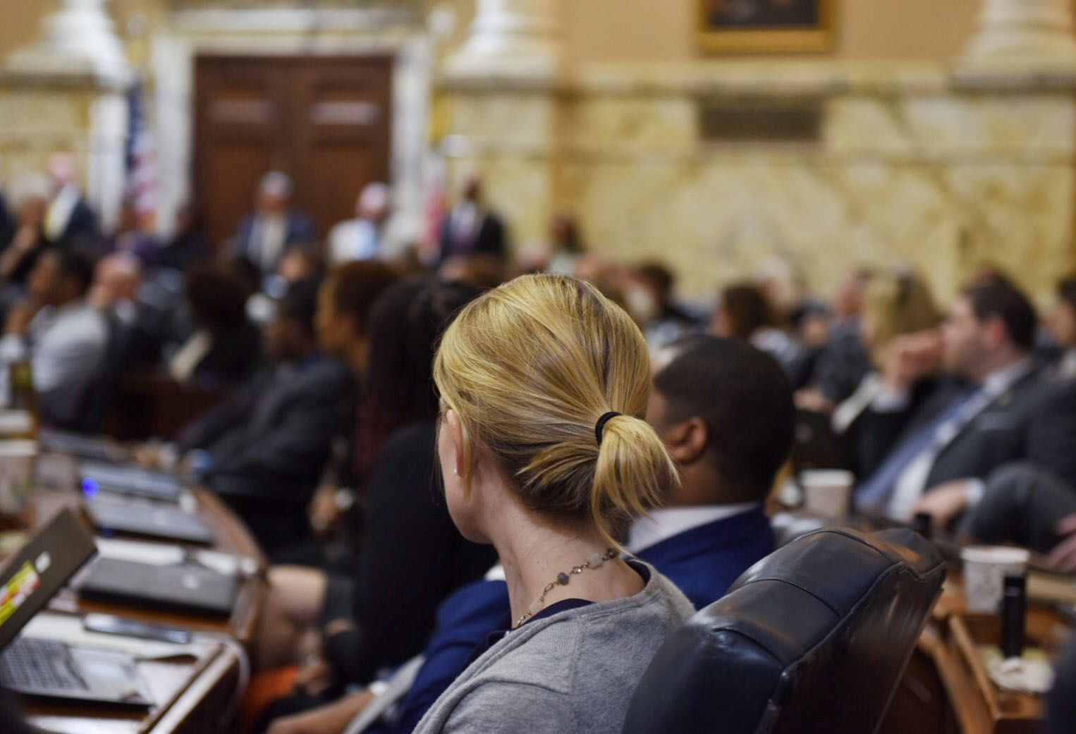 Maryland General Assembly - House of Delegates