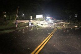 A tree is seen on a car near Reston, Virginia, after a tornado touched down in the area (Courtesy Twitter user @bdwy27)