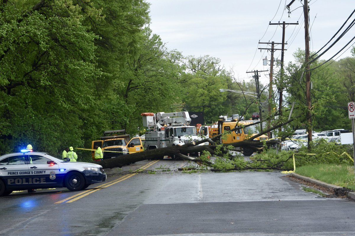 A tree was down on Lanham-Severn Road near 98th Avenue in Bowie, Maryland, Friday afternoon following the storms. (WTOP/Dave Dildine)