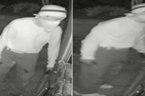 Fairfax Co. police seek to link burglary suspects with other break-ins (Photos)
