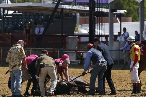 Filly dies on track at Pimlico the day before Preakness