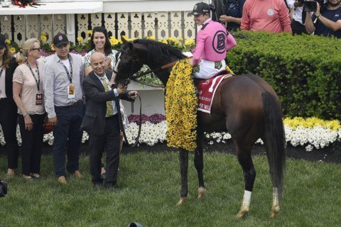 Preakness winner War of Will likely to run in Belmont
