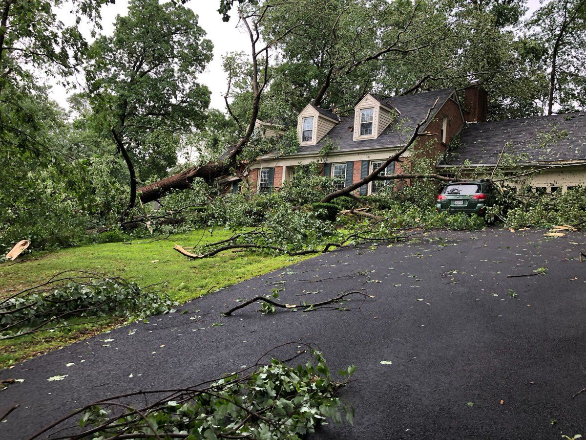Thursday's storms blew down trees and damaged a home in Frederick County, Maryland. (Courtesy Frederick County Fire and Rescue)
