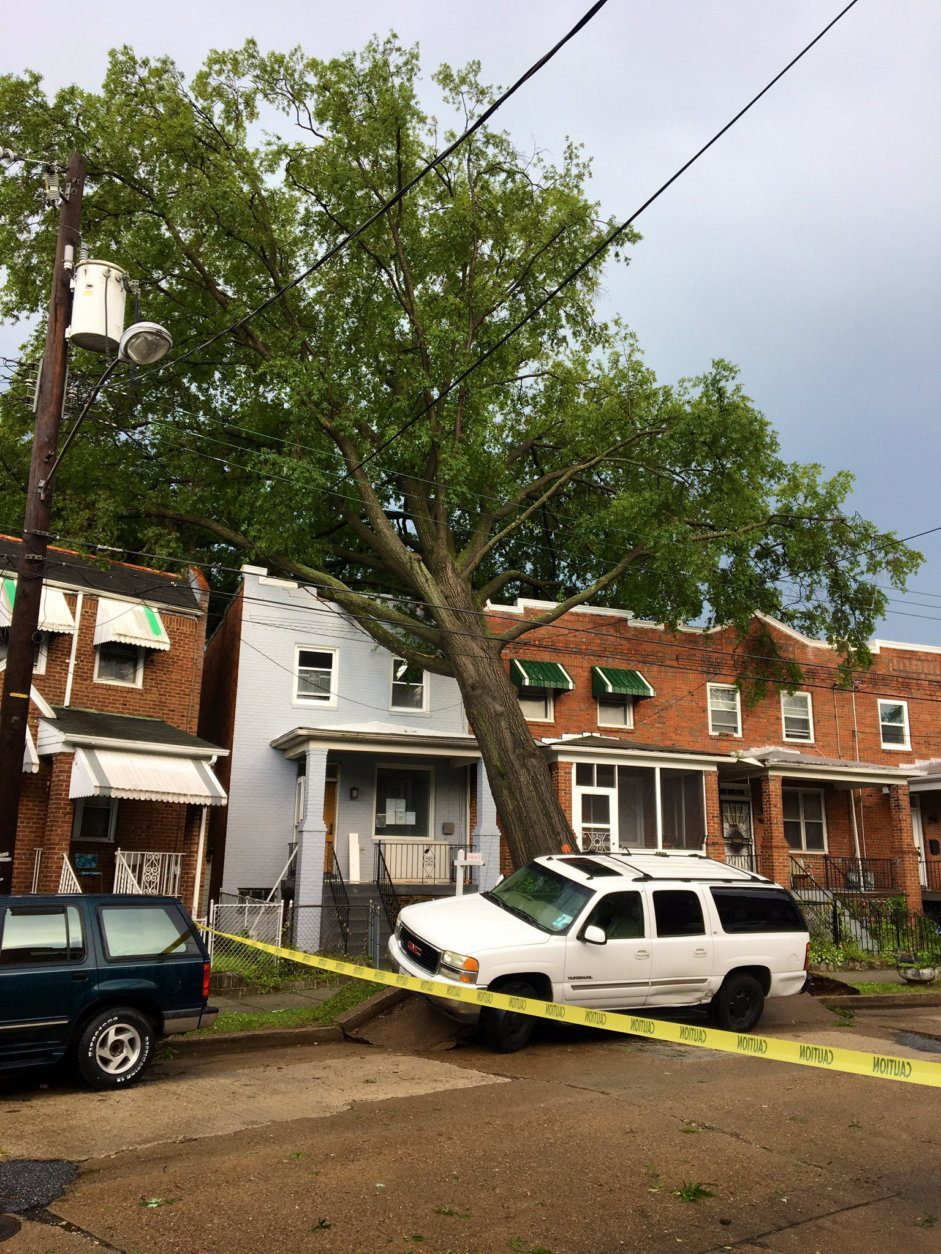 A tree fell into a house on 18th Place in Southeast D.C. (Courtesy DC Fire and EMS)