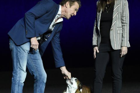 Makers of 'A Dog's Journey' feel vindicated as sequel nears