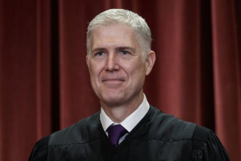 Gorsuch replaces Biden as chair of civic education group
