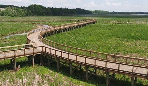 Neabsco Creek boardwalk opens with ribbon-cutting June 1