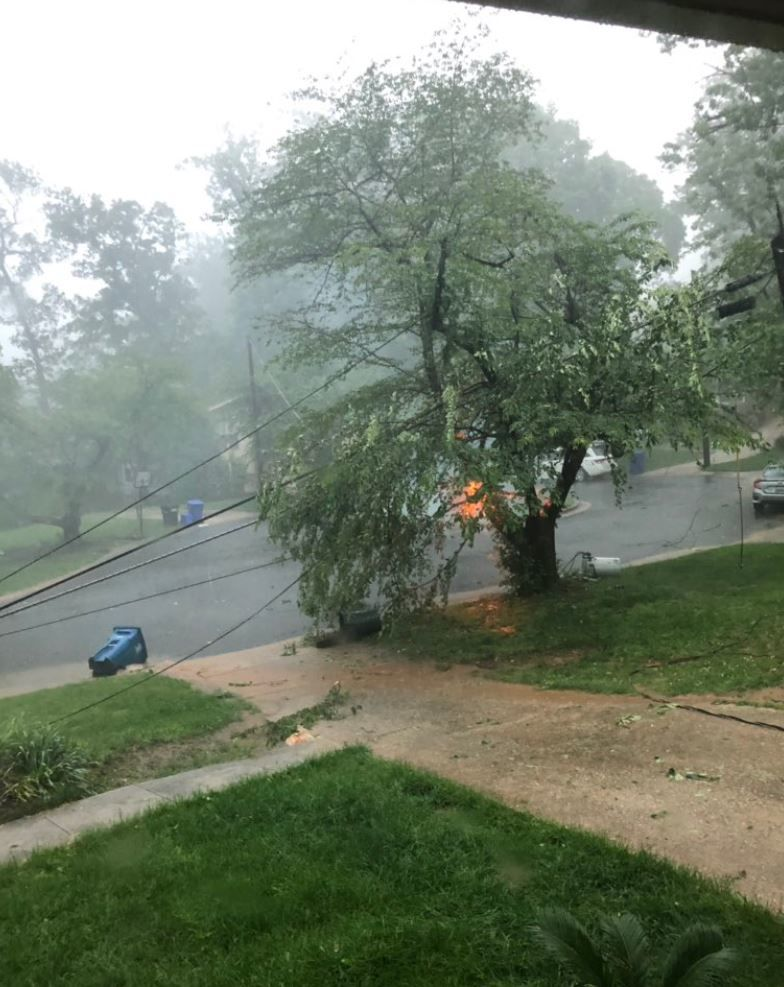 Downed wires due to a fallen tree causes a fire during a storm in the D.C. area on Thursday, May 23, 2019. (Courtesy Sophia Abedellatif)