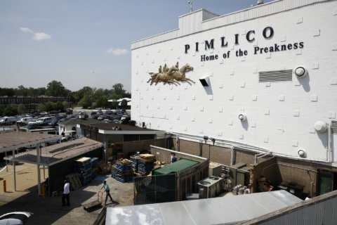 2019 Preakness Stakes preview, odds, predictions