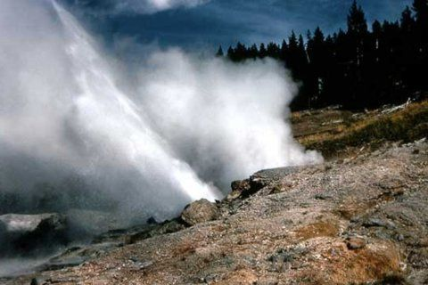 Noisy Yellowstone geyser roars back to life after 3 years