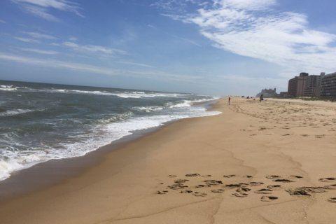 Summer beach resources 2019