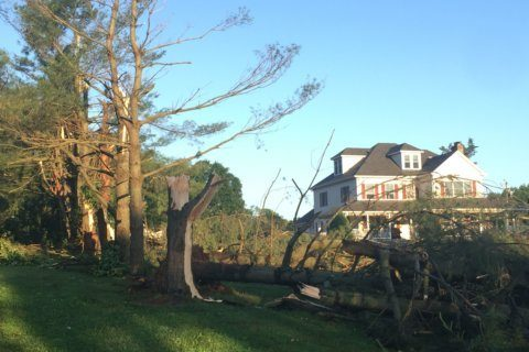 Md. tornado was 'worst thing I've ever experienced'
