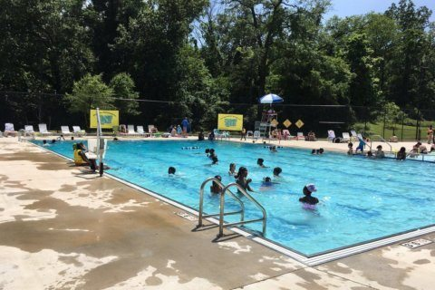 Time for a swim! Kicking off DC's outdoor pool season with a splash