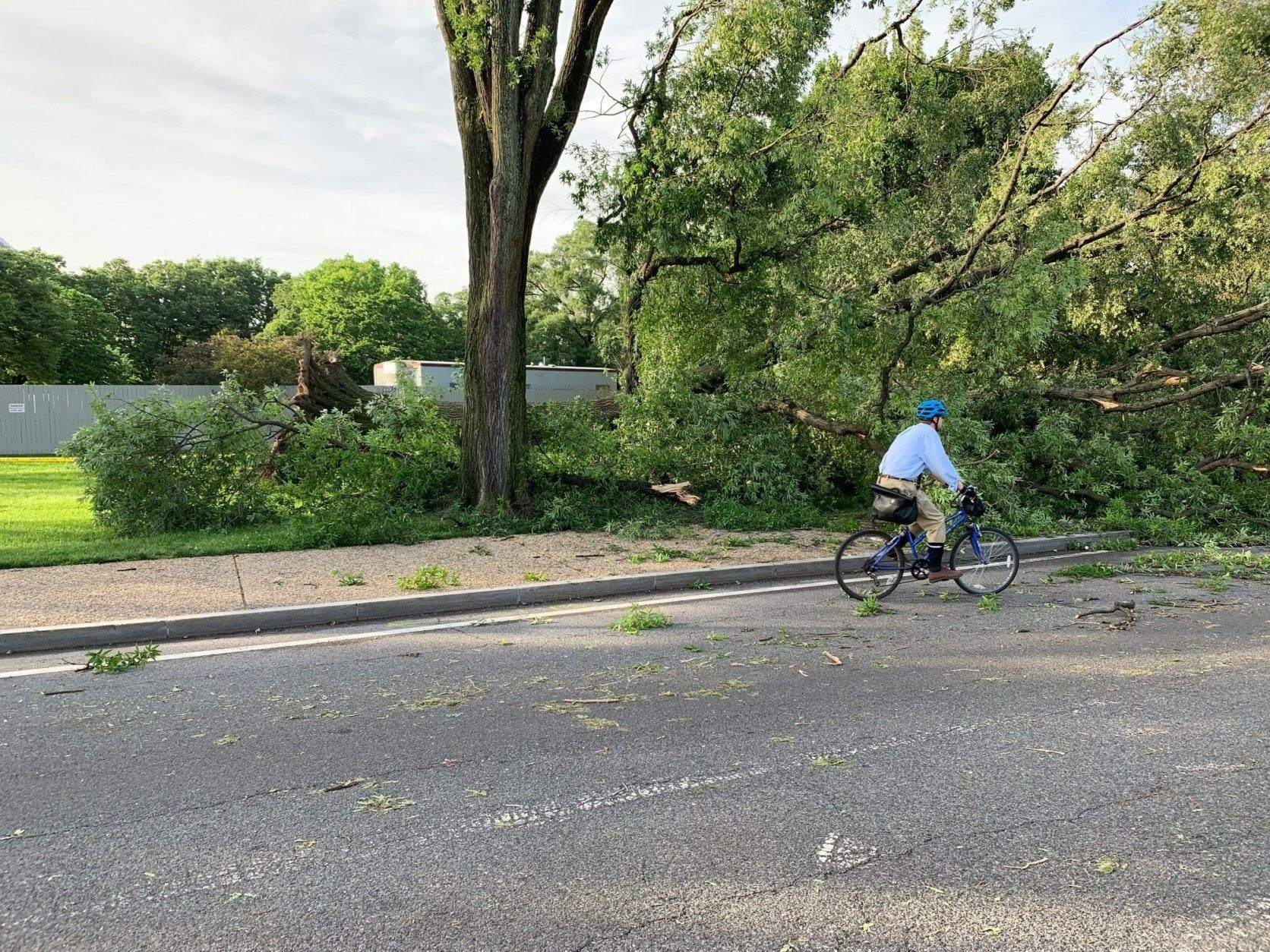 Downed trees block the sidewalk near the Jefferson Memorial in D.C. after a storm on Thursday, May 23, 2019. (WTOP/Dan Friedell)