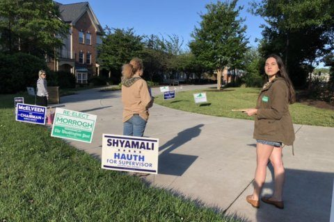 Primary day 2019: Who's on the Virginia ballot, and how to vote