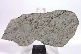A slice of the Chelyabinsk Asteroid space rock. (Courtesy PolandMET Asteroids)
