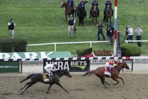 Belmont features one of the safest racing surfaces in US