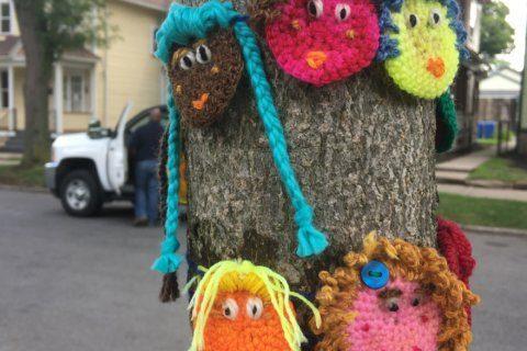 'Yarn Bombers' use craft to make a statement