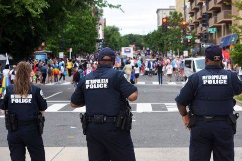 Police arrest man after false report of shooting causes panic at Capital Pride parade