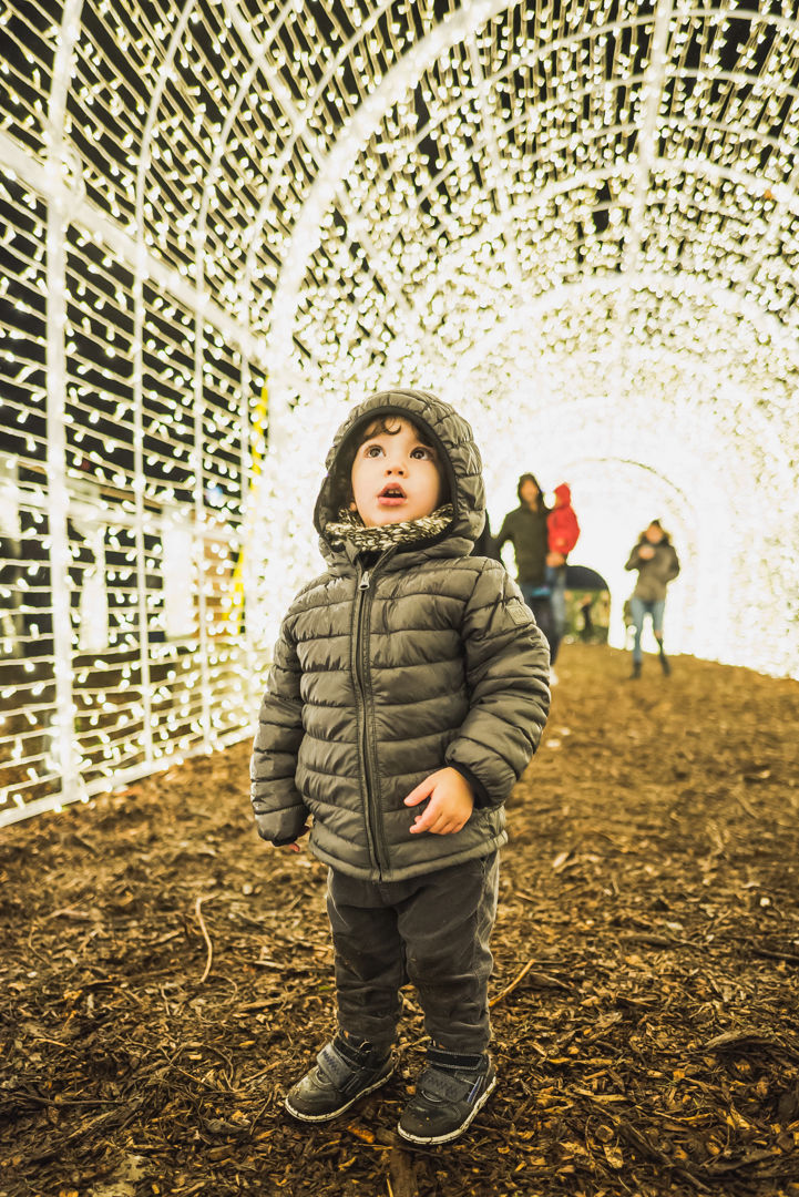 Nationals Park to get huge Christmas