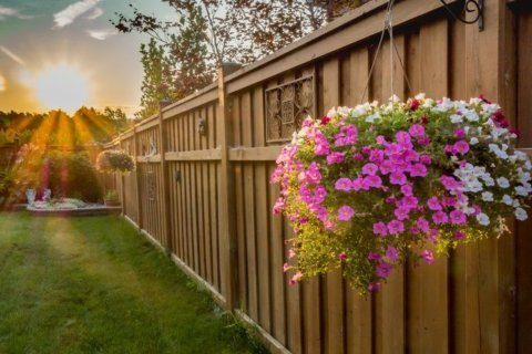 Are you planning a fence installation? Here is what you need to know.