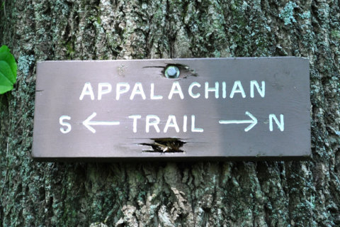Appalachian Trail attack prompts safety website revisions
