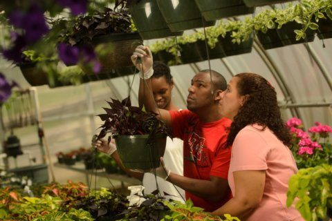 Melwood horticulture program grows plants and people