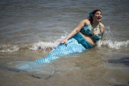 A parade attendee in costume refreshes herself at the sea during the 37th annual Mermaid Parade at Coney Island, Saturday, June 22, 2019 in New York. (AP Photo/Eduardo Munoz Alvarez)