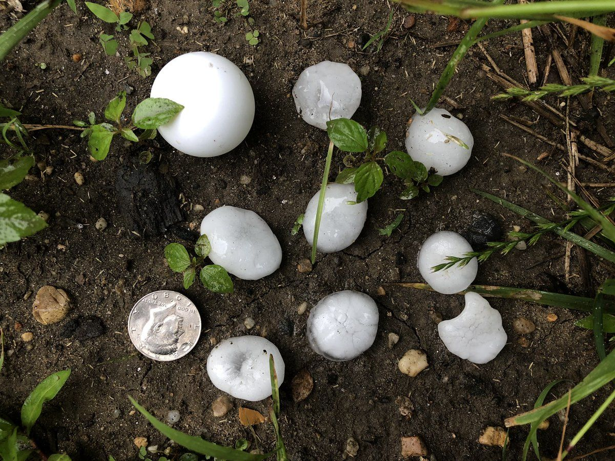 Quarter-sized hail is seen on MacArthur Boulevard near the Beltway on Sunday, June 2. (WTOP/Dave Dildine)