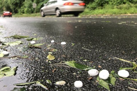 Torrential rain, hail pelt the DC region