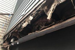 This photo from a Germantown home where a deck collapsed Saturday shows damage to the band board. It happens when flashing isn't installed properly, one expert said, allowing water to seep in. (Courtesy Montgomery County Department of Permitting Services)