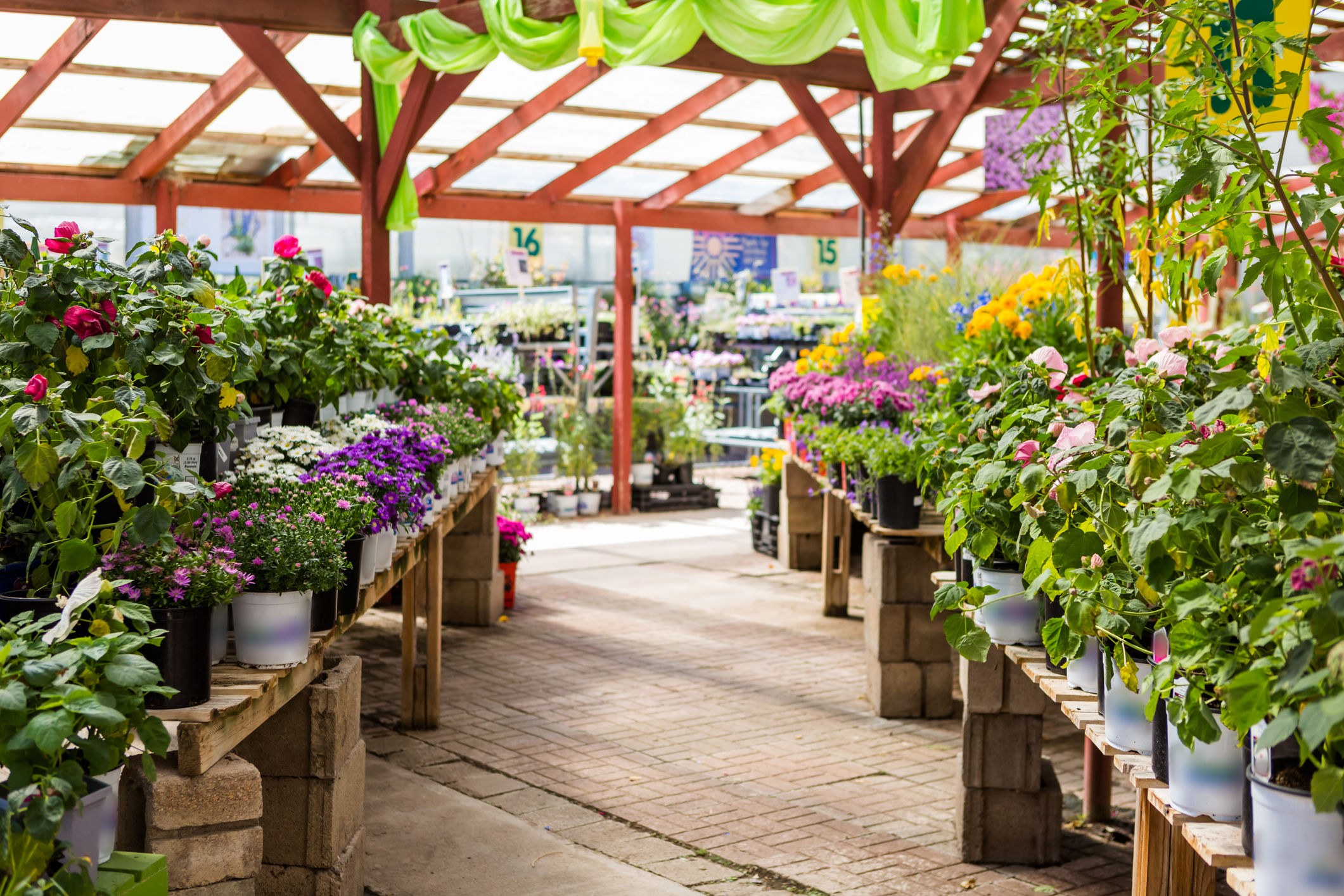 Which Dc Area Garden Center Chains Have The Best Plant Prices Wtop