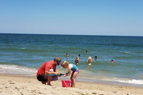 Many beaches can be potentially unsafe for swimming; see how area spots fared