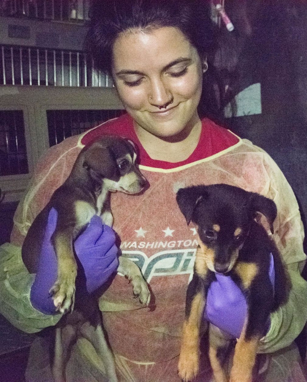 Humane Rescue Alliance worker smiles while holding two puppies