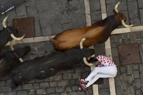 No gorings in fastest bull run at Pamplona in 2019