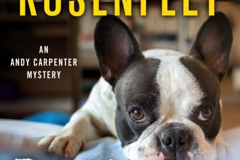 Rosenfelt's new thriller, 'Bark of Night,' is a treat