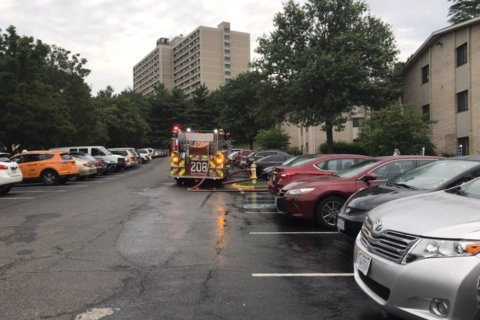 1 dead in Alexandria apartment fire