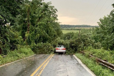 Downed trees, power lines close roads and bring delays across DC area