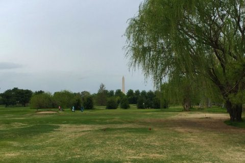 Want to run DC's golf courses? Here's your chance
