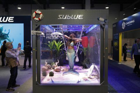 Sex tech in, skimpy outfits out as CES show seeks diversity