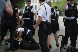"""WASHINGTON, DC - JULY 04: Members of the U.S. Secret Service detain a man after an attempted flag burning in front of the White House on Independence Day July 4th, 2019 in Washington, DC. President Trump is holding a """"Salute to America"""" celebration on the National Mall on Independence Day this year with musical performances, a military flyover, and fireworks. (Photo by Alex Wong/Getty Images)"""
