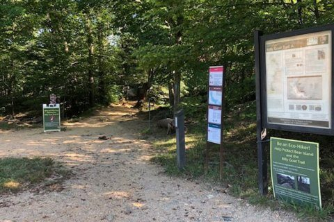Hiker identified after heat-related death at Great Falls