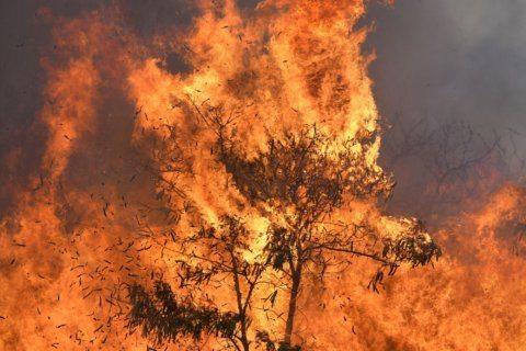 Heat, wind fuel brush fire on Hawaii island of Maui