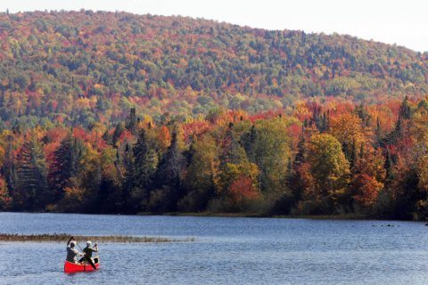 New Hampshire court upholds rejection of Northern Pass plan