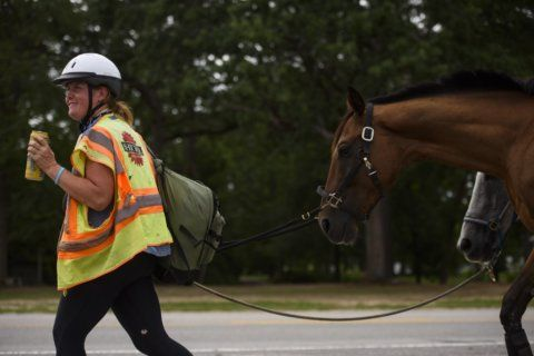 Woman's horseback protest against pipeline is almost done