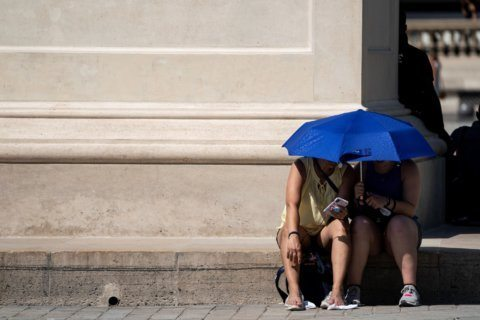 How to stay safe in this week's heat wave