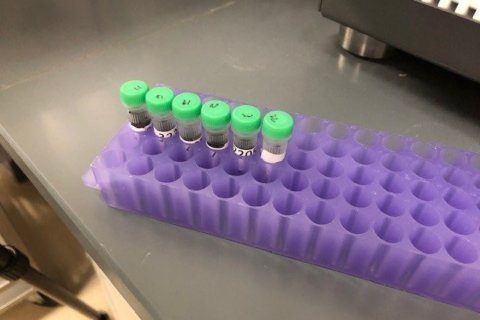 Case Closed: Objections to the new uses of DNA evidence