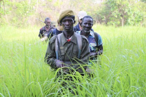 South Sudan tries to protect wildlife after long conflict