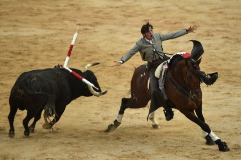 AP PHOTOS: Fear, glory for Spain's mounted bullfighters